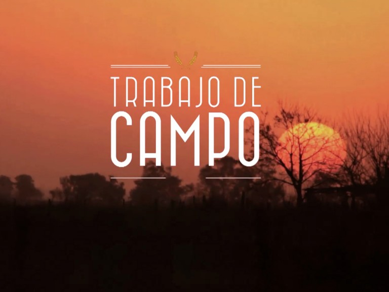 Trabajo de Campo /// Seriado Documental